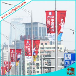 Propandizing Banners on Lamp Post, Publicity Flags on Light Post pictures & photos