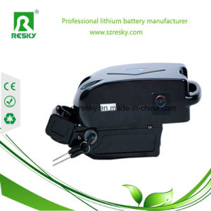 Frog Style 24V 10ah Li-ion Battery Pack