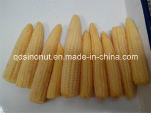 Baby Corn Glass Jar Packing pictures & photos