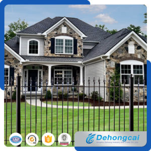 Wrought Iron Fence / Iron Fencing / Stainless Steel Fence / Aluminium Fence pictures & photos