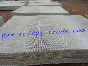 358 High Security Hot-Dipped Galvanized Fencing pictures & photos