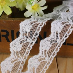 Novel Embroidery Lace for Dress pictures & photos