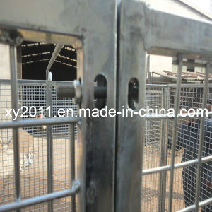 Dog Kennel pictures & photos