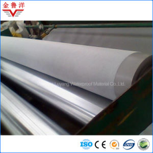 Thermoplastic Polyolefin Waterproof Membrane, Tpo Waterproof Membrane with Excellent Resistance to Weather Aging pictures & photos