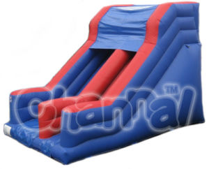 Garden Slides Inflatable Slide/Commercial Inflatable Slide Bb046 pictures & photos