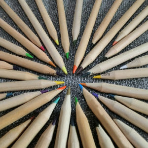 24 Color Pencils for Children pictures & photos