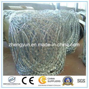 Hot Rolled Steel Concertina Barbed Wire Rod Coils pictures & photos