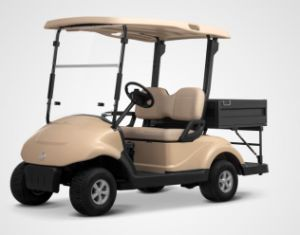 4 Wheel for 2 Seater Electric Golf Cart with Cargo Box Made by Dongfeng Motor