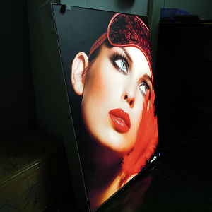 Acrylic Screw Picture Frame Acrylic Photo Light Box for Neon Signs pictures & photos