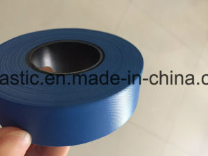 Blue Flagging Tape Used for Agriculture Supplier pictures & photos