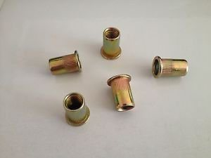 2016 China Hot Sale Flat Head Blind Rivet Nut pictures & photos