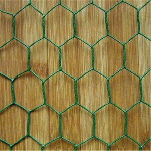 3/4 Chicken Wire /Rabbit Wire Mesh/Galvanized Hexagonal Wire Mesh pictures & photos