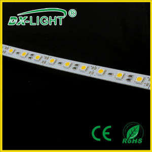 72LED/M SMD5050 LED Rigid Strip IP20/IP65 with CE&RoHS