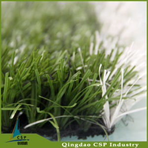 White Artificial Grass for Football pictures & photos