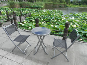 Patio Model Garden Outdoor Furniture pictures & photos