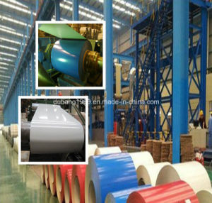 Hot Dipped Galvanized Beautiful Pattern Designed PPGI Coated Steel Coil From China Manufacture From Direct Manufacture with Great Price and Quality