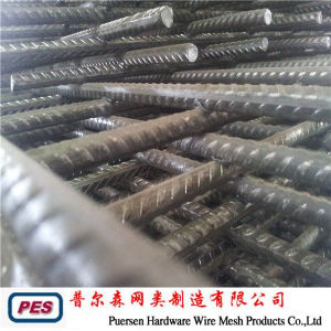 Concrete Reinforcing Steel Mesh pictures & photos