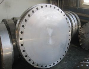 Weld Neck & Blinds Flanges pictures & photos