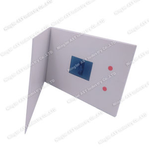 2.4inch MP4 Player Brochure, Video Advertising Brochure pictures & photos