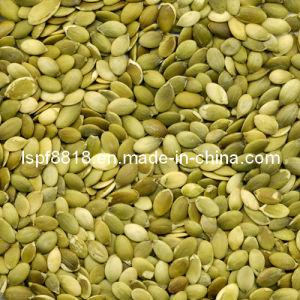 Grade A Shine Skin Pumpkin Seed Kernels