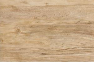 Hot Sale Wooden Porcelain Floor Tile (HP96012)