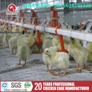 H Type Broiler Battery Cage Chicken Farm Poultry Equipment pictures & photos
