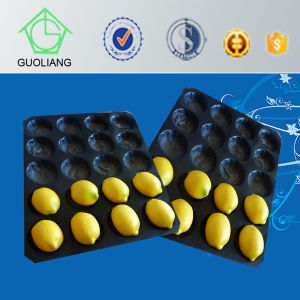 China Manufacture Custom Food Packaging Cheap Plastic Serving Trays pictures & photos