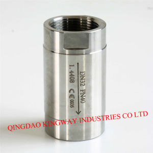 1-PC Threaded Spring Vertical Check Valve/ pictures & photos