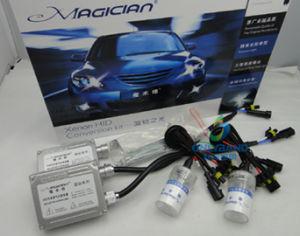 Xenon Lamps (H7)