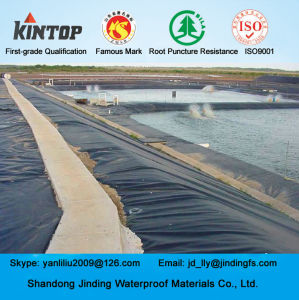 HDPE Geomembrane Used on Aquaculture Pond Liner pictures & photos