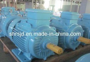 Motor (Y3 motor) CE Certification (Y3 MOTOR)