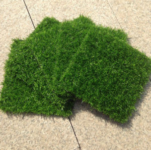25mm Artificial Plant for Garden pictures & photos