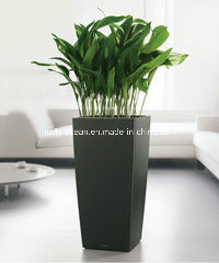 Fo-221 Office Decorative Flower Pot with Light Weight pictures & photos