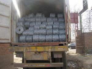 Dongya Galvanized Barbed Wire 12#X14#