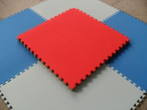 Children Play Mats -C pictures & photos