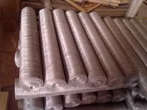 Hot Sales of Stainless Steel Wire Mesh pictures & photos