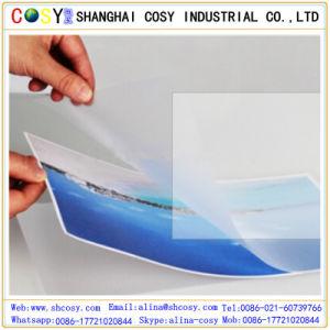 PVC Transparent Cold Lamination Film, Matt/Glossy Photo Cold Lamination Film pictures & photos