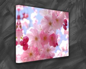 Flower Waterproof Print Canvas (SJMD3723)