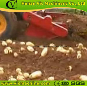 4u1 Potato Harvester, farm machinery pictures & photos