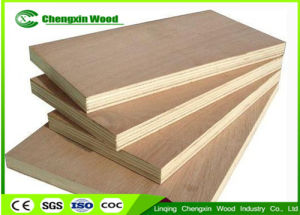 High Quality 1220X2440mm Commercial Birch Plywood with pictures & photos