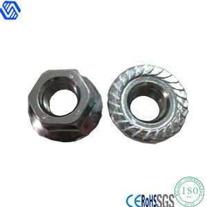 Standard Flange Nut (DIN6923) pictures & photos