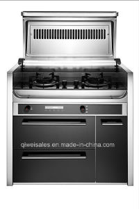 Integrated Cooker with Double Gas Stove (QW-R9) pictures & photos