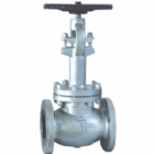 Cast Steel Cryogenic Globe Valve