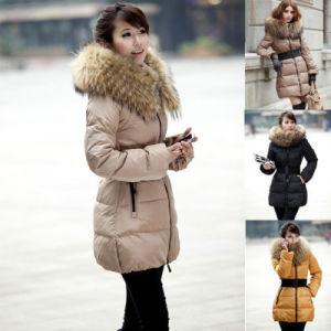 Lady′s Women′s Goose Down Coat pictures & photos