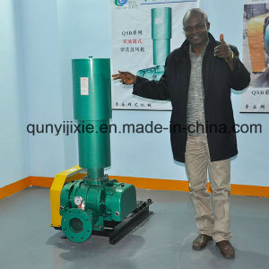 Industrial Oil Free Roots Blower for Sewage pictures & photos