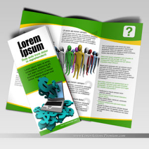 Custom Design Leaflet and Flyers Printing pictures & photos