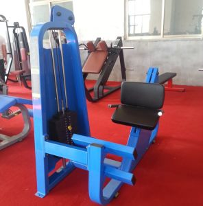 Top Quality Precor Gym Equipment / Camber Curl (SD15) pictures & photos