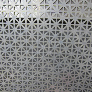 Perforated Metal with Decorative Hole pictures & photos