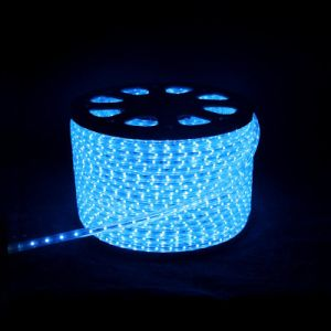 Good priace light SMD led strip light pictures & photos