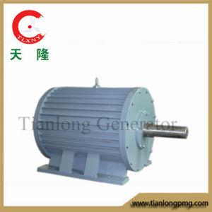 Ff-100kw/350rpm/AC690V Permanent Magnet Generator (PMG/PMA/Hydro)